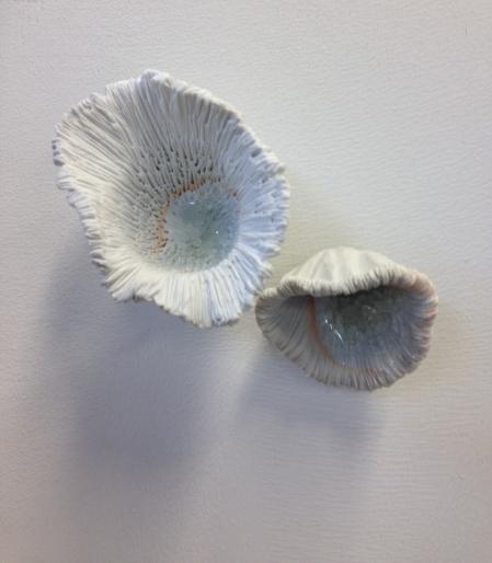 mushroom-crop